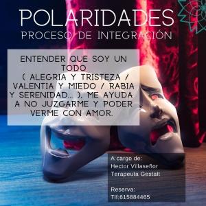 taller polaridades