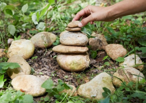 Mindfulness a la natura | Centro Mevis